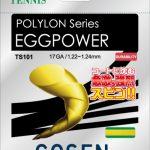 ゴーセン エッグパワー 17